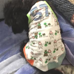 犬服のリメイク